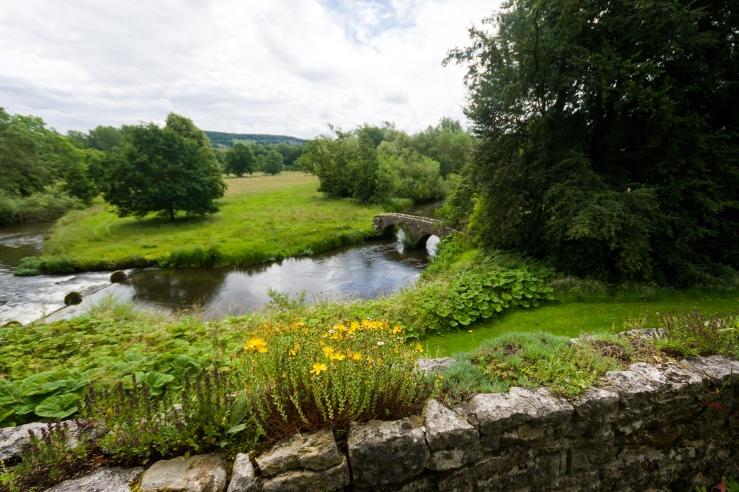 Stream in a landscape